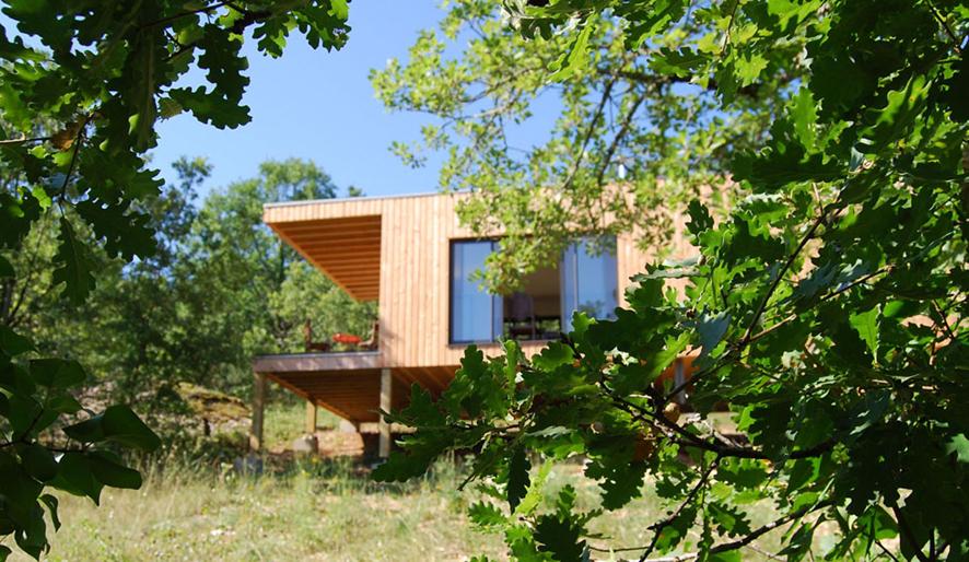 Maison dans les arbres 1